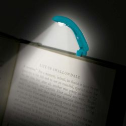 REALLY TINY BOOK LIGHT BLUE